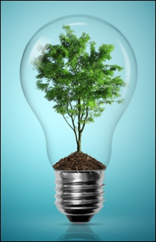 lightbulb_with_tree_220_wide_for_sidebar_0