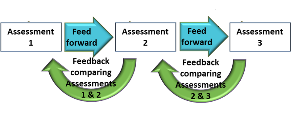 This graphic was inspired by the one developed by the Instructional Development Center at the Purdue University, https://www.purdue.edu/learning/blog/wp-content/uploads/2014/06/FFFBFUimage.png