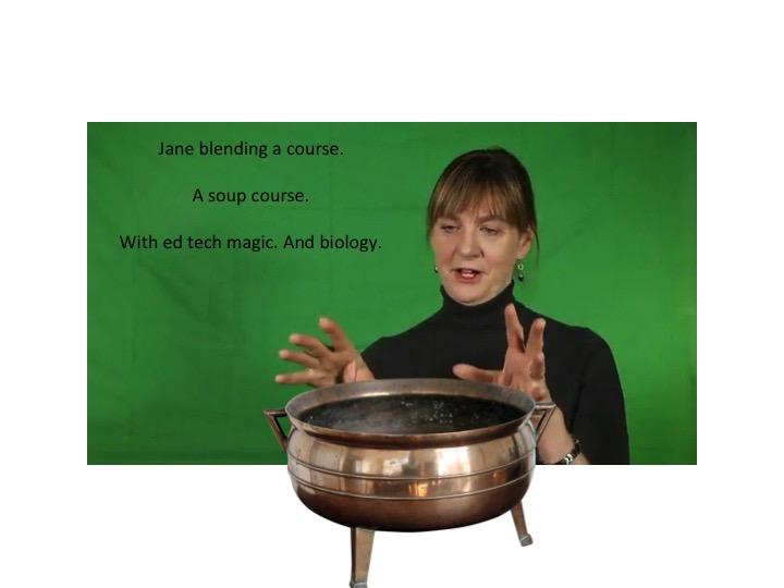Jane Holbrook gestures over a bowl.